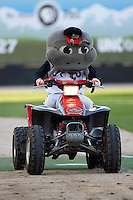 "The Carolina Mudcats mascot ""Muddy"" makes his entrance riding a four wheeler at Five County Stadium May 19, 2009 in Zebulon, North Carolina. (Photo by Brian Westerholt / Four Seam Images)"