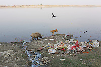 Tannery waste water, mixed with domestic trash, is discharged directly into the Ganges River, India's holiest of waterways.