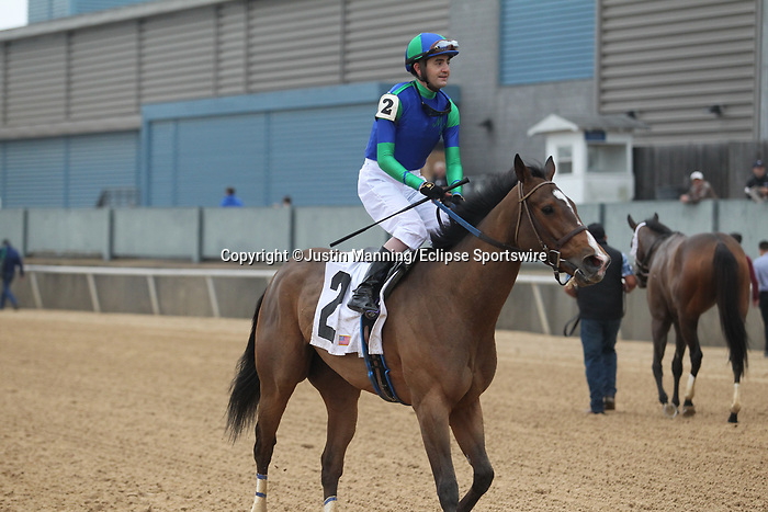 February 17, 2020: Go Google Yourself (2) with jockey Brian Hernandez Jr. aboard after winning the Bayakoa Stakes at Oaklawn Racing Casino Resort in Hot Springs, Arkansas on Feburary 17, 2020. Justin Manning/Eclipse Sportswire/CSM
