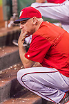22 August 2015: Washington Nationals Manager Matt Williams watches play from the dugout steps during a game against the Milwaukee Brewers at Nationals Park in Washington, DC. The Nationals defeated the Brewers 6-1 in the second game of their 3-game weekend series. Mandatory Credit: Ed Wolfstein Photo *** RAW (NEF) Image File Available ***