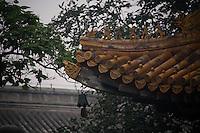 Dans la brume du matin, la corniche du temple de l'Est dédié au bouddha de médecine.