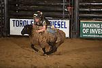 SEBRA - Raphine, VA - 4.12.2014 - Mutton Bustin'