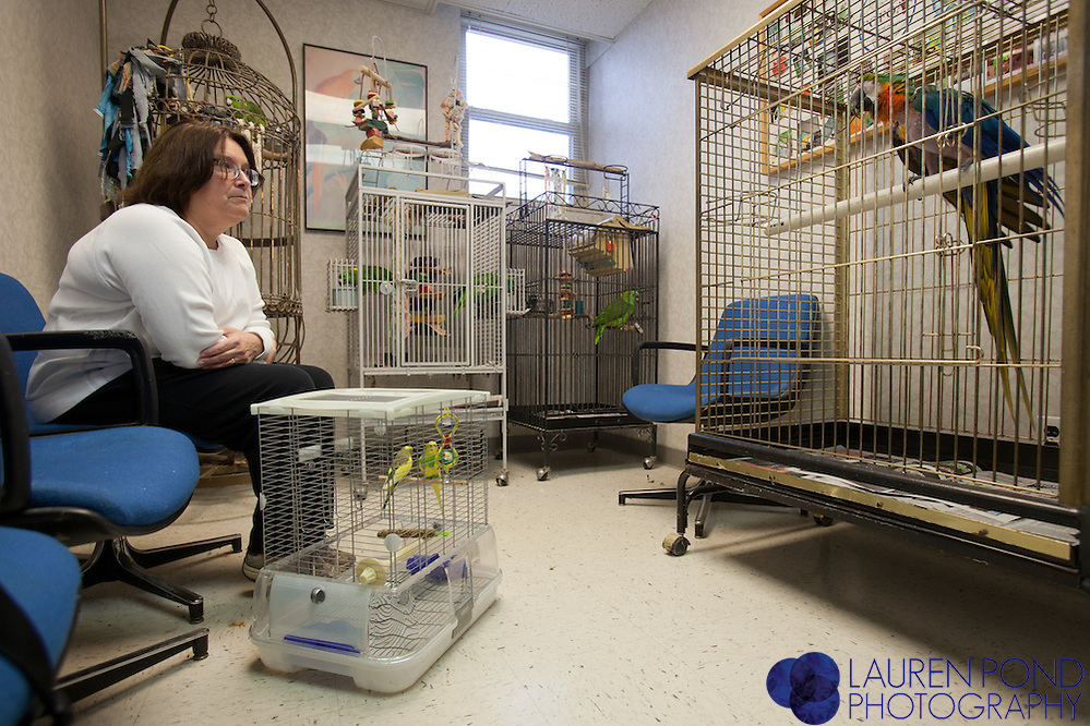 Colleen Crooks, of Chillicothe, Ohio, sits with her two parakeets in the waiting room at the Avian Health Clinic in Reynoldsburg, Ohio.