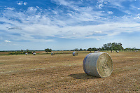 This is a Texas farm ranch with their haybales all ready to be picked up for delivery to local ranches.