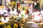02/01/2012 Anuj Bidve vigil