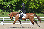 Class 1. British dressage. Brook Farm Training Centre. Essex. UK. 12/05/2019. ~ MANDATORY Credit Garry Bowden/Sportinpictures - NO UNAUTHORISED USE - 07837 394578