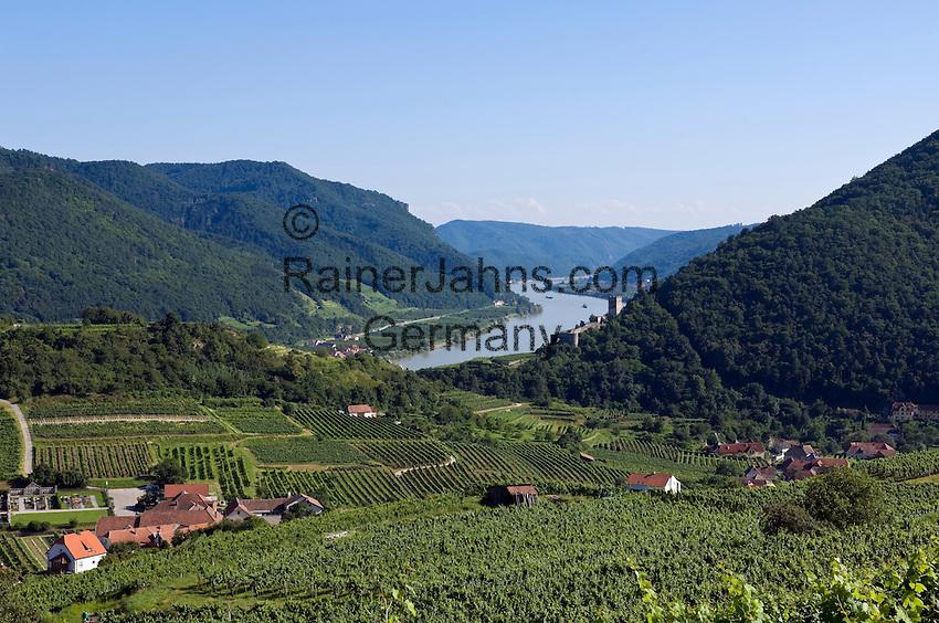 Austria, Lower Austria, Spitz at river Danube: wine growing region at UNESCO World Heritage Wachau, right castle ruin Hinterhaus