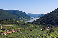Austria, Lower Austria, Spitz at river Danube: wine growing region at UNESCO World Heritage Wachau, right castle ruin Hinterhaus