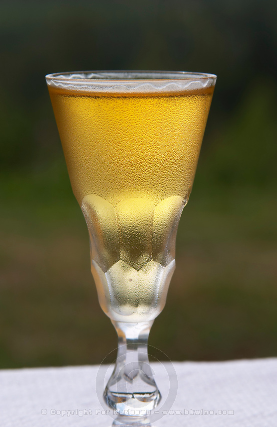 Swedish traditional aquavit schnapps glass in pointed form filled to the brim with spiced vodka, brannvin. Frosty ice cold drops on the outside. Sweden, Europe.