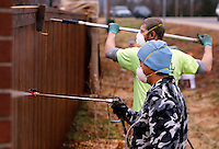 NWA Media/DAVID GOTTSCHALK - 12/3/14 - Pedro Ortiz, foreground, uses a sprayer, as Darrin Davis, both with JR Ball Contracting Group, Inc. of Springdale,  uses a roller to apply an oil based stain sealer on a fence Wednesday December 3, 2014 in Fayetteville. The men will be staining both sides of the newly installed fence bordering Paradise View Estates.