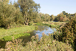 Salisbury River Avon, meandering near Fifield, near Netheravon, Wiltshire, England, UK