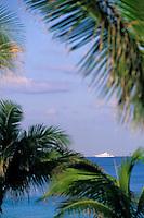 """Iles Bahamas / New Providence et Paradise Island / Nassau: Hotel """"One & Only Océan Club"""" palmiers du parc et bateau de croisière"""