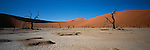 Sand dunes with dead trees in Sossusvlei National Park, Namibia.