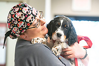 Animal Emergency and Referral Center in Flowood. Candid shots AERC, Animal Emergency Referral Center, Flowood, MS