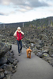 USA, Oregon, Oregon Cascades, a woman and her dog walk around the Dee Wright Observatory in the middle of an old lava flow at the top of the McKenzie Pass on Hwy 242, the Wilamette National Forest