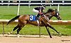 Stormin Monarcho winning at Delaware Park racetrack on 6/16/14