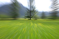 Blurred meadow, Austrian Alps.