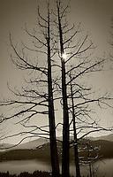 Above Fallen Leaf Lake (Desolation Wilderness)