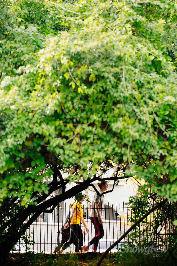 Image Ref: M292<br /> Location: Royal Botanical Gardens, Melbourne<br /> Date: 10.06.17