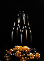 Silhouette di tre bottiglie di vino su sfondo nero con grappoli d'uva bianca e nera.<br /> Silhouette of three bottles of wine on black background with white and black grapes.