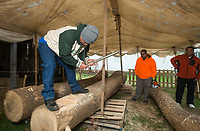 NWA Democrat-Gazette/BEN GOFF @NWABENGOFF<br /> Work begins on carving the KorKor canoe Saturday, April 14, 2018, during a ceremony to launch a project to build a Marshallese KorKor, a type of outrigger canoe, at the Shiloh Museum of Ozark History in Springdale. Over the coming weeks master builder Liton Beasa, born and raised on Namdrik Atoll in the Marshall Islands and living in Springdale since 2013, and his family will build a roughly 20 foot long KorKor at the museum with opportunities for school groups and the public to observe. On the Marshall Islands canoes are built from breadfruit trees, but this canoe will be built from a locally-sourced sycamore tree. The builders plan to feature the finished canoe during Jemenei Day (Marshallese constitution day) celebrations in Springdale between May 25-28. The project is supported by the Arkansas Coalition of Marshallese of Springdale and the Shiloh Museum of Ozark History, with grants from the Arkansas Humanities Council and the National Endowment for the Humanities.