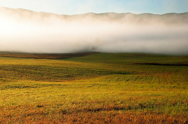 Autumn meadow and receding fog, Cades Cove