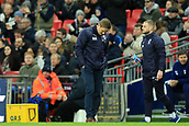 7th January 2018, Wembley Stadium, London, England;  FA Cup football, 3rd round, Tottenham Hotspur versus AFC Wimbledon; A dejected AFC Wimbledon Manager Neal Ardley after his team went behind by 3-0