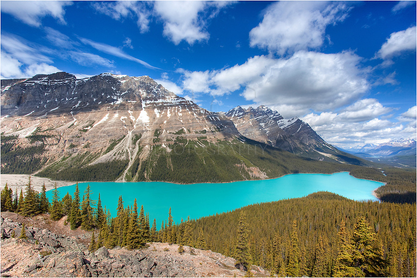 Peyto Lake in the Canadian Rockies is a beautiful place to visit. If you arrive in the afternoon, you'll be treated to a special surprise - the glow in the water. When the sun is high, the light hits the water, and with the mineral contents in the water, the colors turn a vibrant aqua blue.