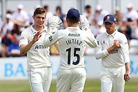 Cricket 2015-07