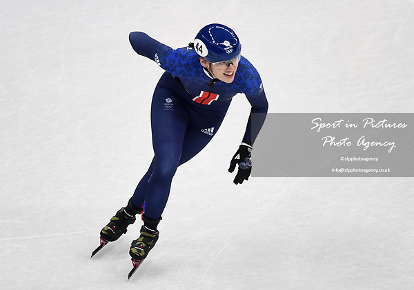 Charlotte Gilmartin (GBR) holds her side following her crash. Womens 500m. Short track. Gangneung ice arena. Pyeongchang2018 winter Olympics. Gangneung. Republic of Korea. 10/02/2018. ~ MANDATORY CREDIT Garry Bowden/SIPPA - NO UNAUTHORISED USE - +44 7837 394578