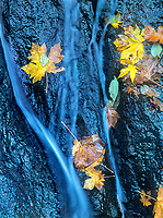 738600044 autumn colored leaves decorate the rock fall shaping wachlella falls in the columbia river gorge national scenic area in northern oregon