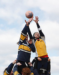 A George Washington University player (l) and Naval Academy opponent (r) reach for the ball during a match at the annual Cherry Blossom Rugby Tournament at Rosecroft Raceway in Fort Washington, Maryland.  Editorial use only.  Commercial use prohibited.  (Photograph by Jonathan Paul Larsen)