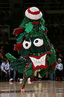 STANFORD, CA - FEBRUARY 5:  The Stanford Tree during Stanford's 65-54 win over the Washington State Cougars on February 5, 2009 at Maples Pavilion in Stanford, California.