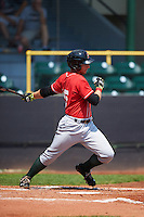 Great Lakes Loons designated hitter Federico Celli (25) at bat during a game against the Clinton LumberKings on August 16, 2015 at Ashford University Field in Clinton, Iowa.  Great Lakes defeated Clinton 3-2 in ten innings.  (Mike Janes/Four Seam Images)