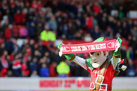 Nottingham Forest mascot Robin Hood shows his support<br /> <br /> Photographer David Shipman/CameraSport<br /> <br /> The EFL Sky Bet Championship - Nottingham Forest v Blackburn Rovers - Saturday 13th April 2019 - The City Ground - Nottingham<br /> <br /> World Copyright © 2019 CameraSport. All rights reserved. 43 Linden Ave. Countesthorpe. Leicester. England. LE8 5PG - Tel: +44 (0) 116 277 4147 - admin@camerasport.com - www.camerasport.com