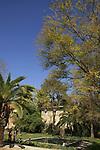 Israel, Sea of Galilee. The pond at Mula Garden in kibbutz Degania Alef
