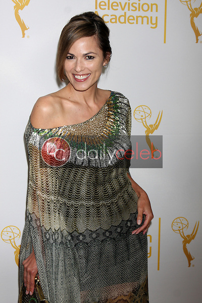 LOS ANGELES - JUN 19:  Terri Ivens at the ATAS Daytime Emmy Nominees Reception at the London Hotel on June 19, 2014 in West Hollywood, CA