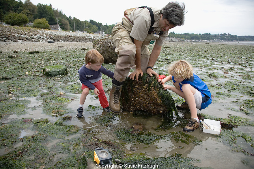 Beach Naturalist lifts a big rock to show boys how many diverse creatures live underneath.