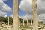 Samaria, Sebastia, ruins of the forum of the Roman city Sebaste