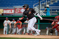 Batavia Muckdogs Albert Guaimaro (13) bats during a NY-Penn League game against the Auburn Doubledays on June 19, 2019 at Dwyer Stadium in Batavia, New York.  Batavia defeated Auburn 5-4 in eleven innings in the completion of a game originally started on June 15th that was postponed due to inclement weather.  (Mike Janes/Four Seam Images)