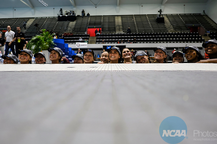 INDIANAPOLIS, IN - MARCH 18: Stanford after jumping in the pool after winning the Division I Women's Swimming & Diving Championships held at the Indiana University Natatorium on March 18, 2017 in Indianapolis, Indiana. (Photo by A.J. Mast/NCAA Photos via Getty Images)