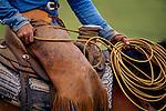 Close up, cowboy dally. Cattle roundup in Santa Maria, California
