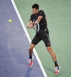 Djokovic Defeats Monaco in Semis 6-0, 76