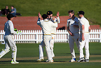 Day three of the Plunket Shield cricket match between Wellington Firebirds and Otago Volts at the Basin Reserve in Wellington, New Zealand on Friday, 19 October 2018. Photo: Dave Lintott / lintottphoto.co.nz
