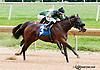 Sweet Dixie Belle winning at Delaware Park on 9/16/13