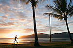 Early morning walker on the Esplanade.  Cairns, Queensland, Australia