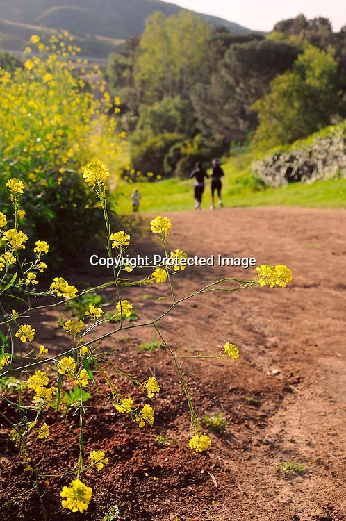 Stock photos Hikers