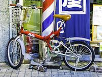 Growing Flat Bike in Ota, Japan 2014.