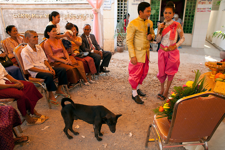 Stray dog wanders into a buddhist wedding in a small village outside of Phnom Penh, Cambodia. <br /> <br /> Photos &copy; Dennis Drenner 2013.
