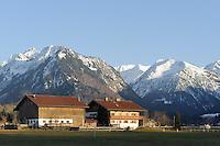 Viehweiden  Oberstdorf im Allg&auml;u, Bayern, Deutschland<br /> pastures in Oberstdorf, Allg&auml;u, Bavaria,  Germany